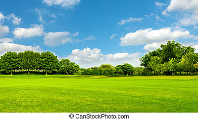 Green field, tree and blue sky. Great as a background, web banner
