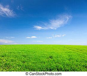 Green field under blue cloudy sky