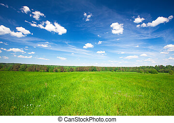Green field under blue cloudy sky