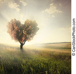 Green field with heart shape tree under blue sky. Valentine...