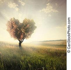 Green field with heart shape tree under blue sky. Valentine...
