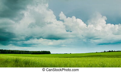 Green field with overcast clouds