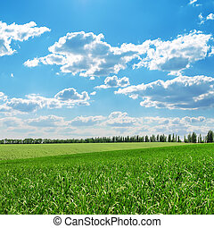 green fields and blue cloudy sky