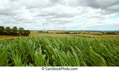 green fields with windmills - cloudy sky with strong winds...