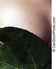 Green Fig Leaf Covering Caucasian Womans Breast - Bare...