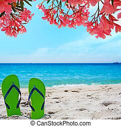 flip flops under pink flowers on the beach