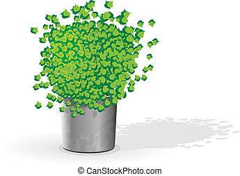Green flower in a pot