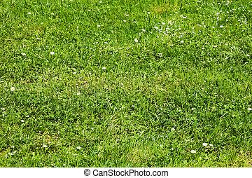 Green flowering