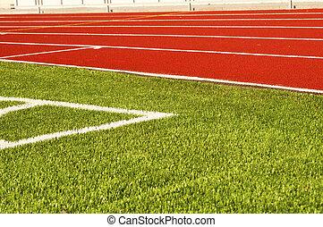 Green football field grass. Stadium
