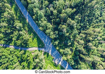 Green forest aerial drone view. Road in forest from above.