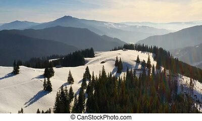 Green forest and snowy mountains at sunrise, aerial winter...