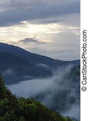 Green Forest Blue Misty Mountain
