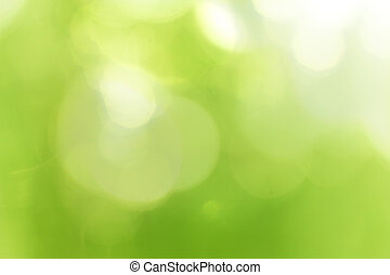 Green forest bokeh
