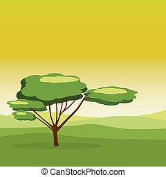 Green forest landscape.
