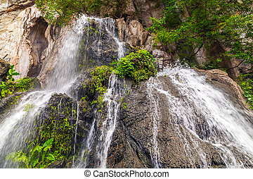 green forest Mountain Waterfall