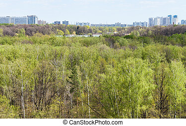 green forest with lake and city in spring