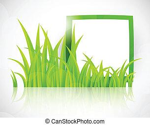 Green frame in grass