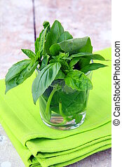 green fresh basil in the glass