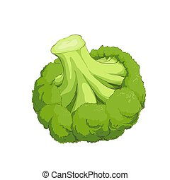 Green fresh broccoli - Fresh tasty green fresh broccoli