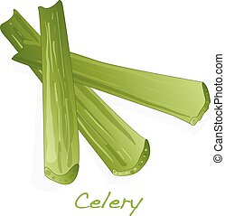 Green fresh celery isolated on white.