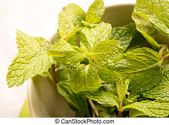 Green fresh mint in a bowl
