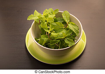 Green fresh mint in a cup and saucer