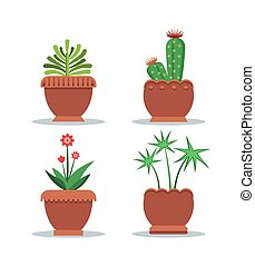 Green Fresh Room Plants Grown in Big Clay Pots Set - Green...