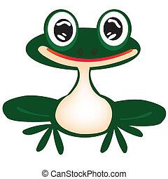 Green frog on white