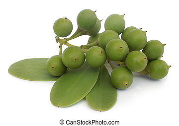 Green fruit with leaves