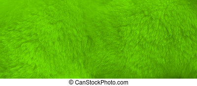 Green fur background close up view. Banner