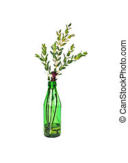 Green glass bottle with fresh decorative leaves
