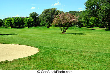 Green golf course, flowering tree and sand pit