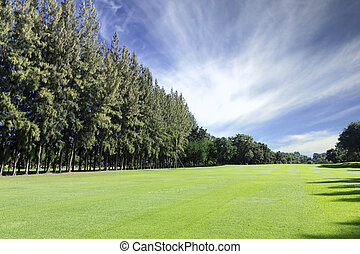 Green golf field