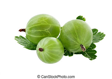 green gooseberry close-up isolated on white background.