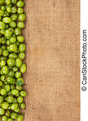 Green gooseberry lying on sackcloth with a place for text