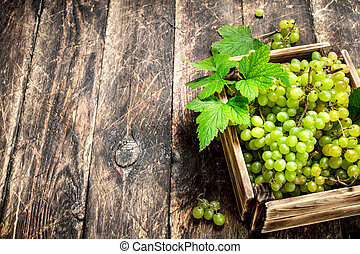 Green grapes in a box.