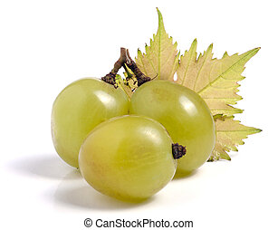 Green grapes with leaf isolated on white background