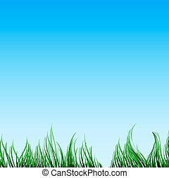 Green grass and a blue sky