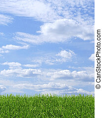 Green grass and blue sky - Green grass growing on blue ...