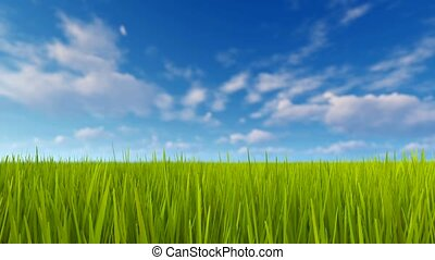 Green grass and blue sky with clouds 4K