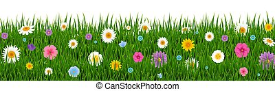 Green Grass And Flowers Border
