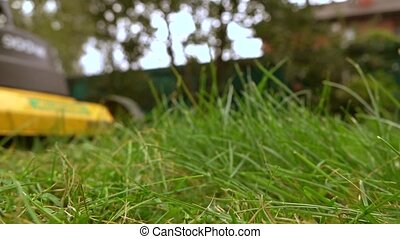 Green grass and man with lawn mower. 4K low angle slow motion shot