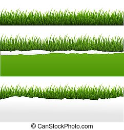 Green Grass And Ripped Paper White Background Set