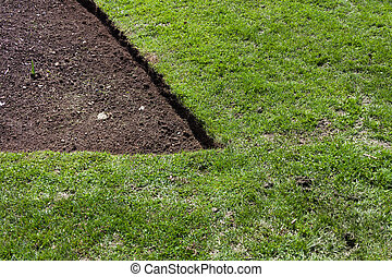 green grass and soil