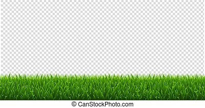 Green Grass And Transparent Background