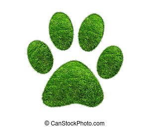 Green grass animal footprint