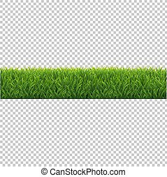 Green Grass Background Isolated Transparent Background