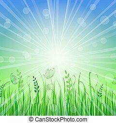 Green Grass Background over Blue Sky