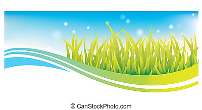 Green grass banner with blue sky