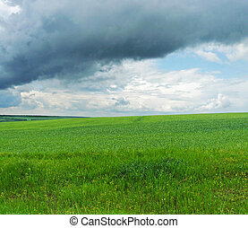 Green grass, blue sky, landscape
